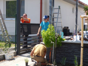 6-výplne-a-elektrina_spolupraca_zahradny architekt_Lucia Bullova