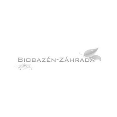 Biobazén - záhrada, jazierka, bio bazény